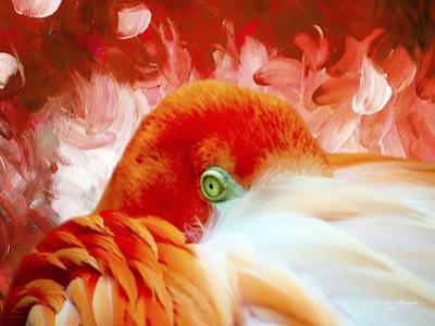 Red Flamigo by Ata Alishahi