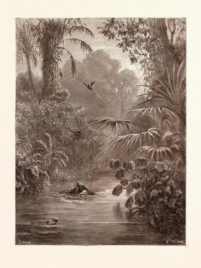 Atala and Chactas Crossing a River-Gustave Dore-Giclee Print