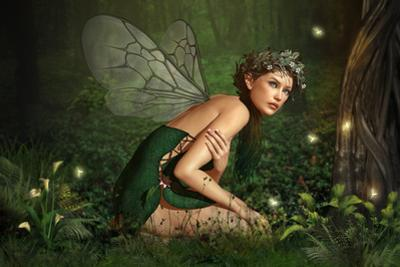 In The Fairy Forest by Atelier Sommerland