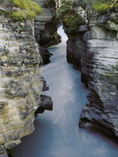Athabasca River-Jim Zuckerman-Photographic Print