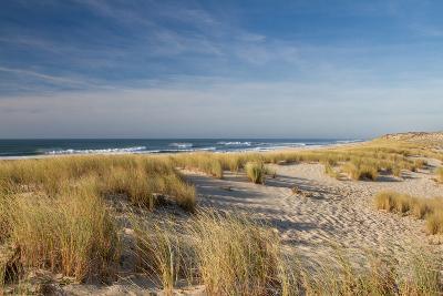 Atlantic Coast and Cap Ferret-I hope you'll like it-Photographic Print
