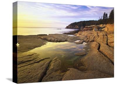 Atlantic coast near Thunder Hole, Acadia National Park, Maine-Tim Fitzharris-Stretched Canvas Print
