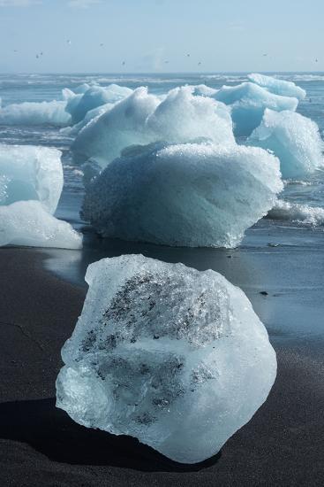Atlantic Coast with Iceberg Remains at the Jškulsarlon-Catharina Lux-Photographic Print