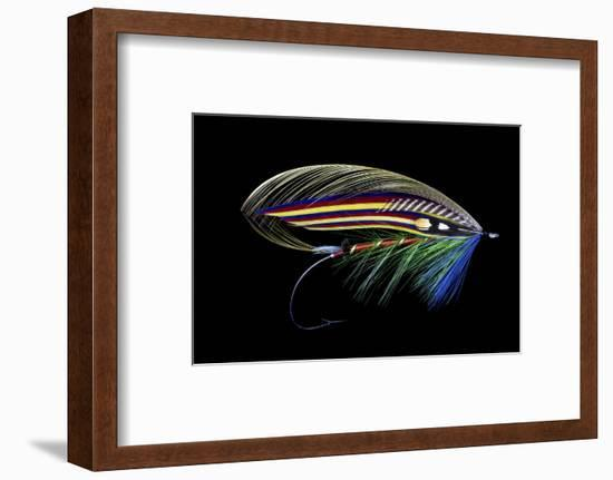 Atlantic Salmon Fly designs 'Clabby'-Darrell Gulin-Framed Photographic Print