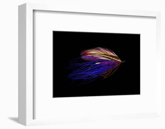Atlantic Salmon Fly designs 'Iris Spey'-Darrell Gulin-Framed Photographic Print