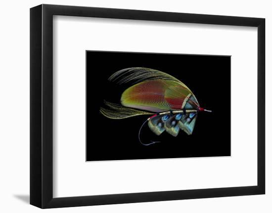 Atlantic Salmon Fly designs-Darrell Gulin-Framed Photographic Print