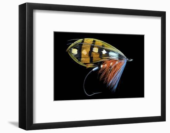 Atlantic Salmon Fly designs-Darrell Gulin-Framed Photographic Print
