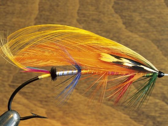 Atlantic Salmon Fly in Flytying Vise, Canada.-Keith Douglas-Photographic Print