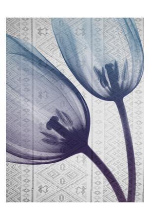https://imgc.artprintimages.com/img/print/aubergine-textiles-2_u-l-f90a8t0.jpg?p=0