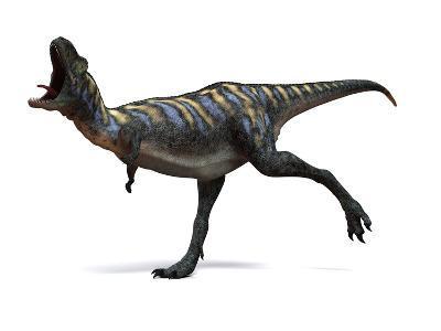 Aucasaurus Dinosaur, Artwork-SCIEPRO-Photographic Print