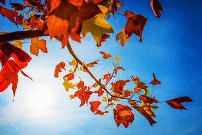 Audacious Autumn-Philippe Sainte-Laudy-Photographic Print