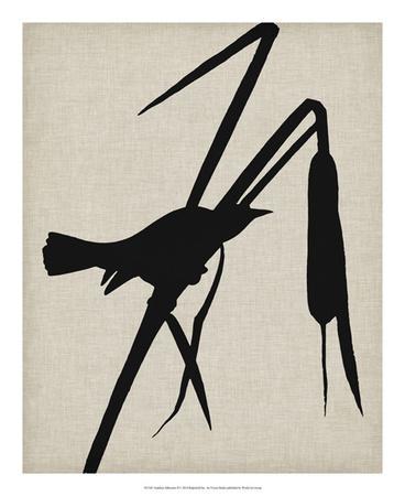 Audubon Silhouette II-Vision Studio-Giclee Print