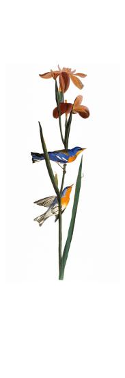 Audubon: Warbler, 1827-John James Audubon-Giclee Print