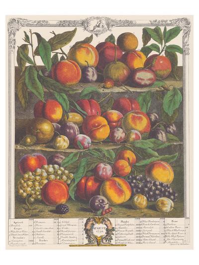 August 1732-Robert Furber-Premium Giclee Print