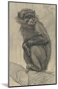 Monkey on a Branch, 1879 by August Allebe