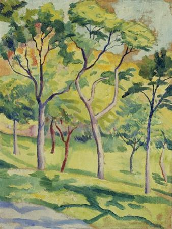 A Meadow with Trees, 1910
