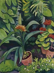 Flower Pots in a Garden: Bush Lilies and Pelargonidin, 1911 by Auguste Macke