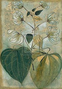 Du Jardin III by Augustine (Joseph Grassia)