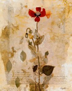 Sendree I by Augustine (Joseph Grassia)