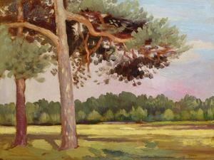 Landscape with Fir Trees by Augustus Edwin John