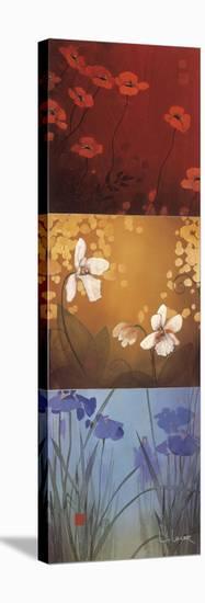 Aura-Don Li-Leger-Stretched Canvas Print