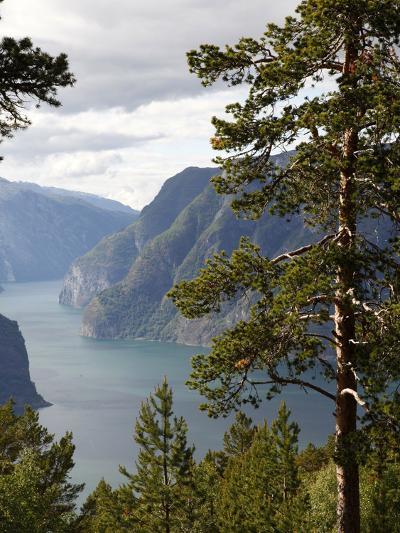 Aurlandsfjorden Near Aurlandsvangen, Sogn Og Fjordane, Norway, Scandinavia, Europe-Hans Peter Merten-Photographic Print