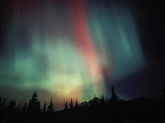 Aurora Borealis, Alaska, USA-Tom Walker-Photographic Print
