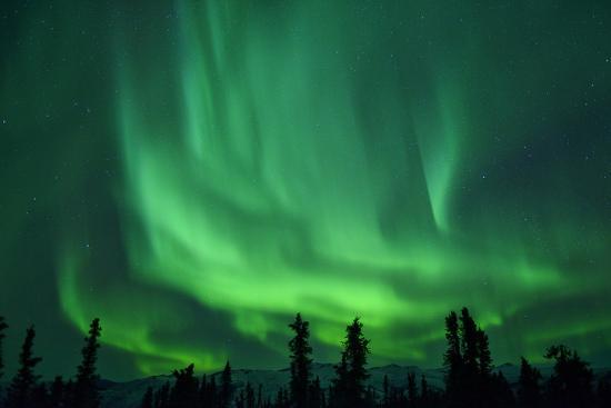 Aurora Borealis at Chena Hot Springs, Fairbanks, Alaska, Usa-Christian Heeb-Photographic Print