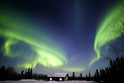 Aurora Borealis In Alaska-Chris Madeley-Photographic Print