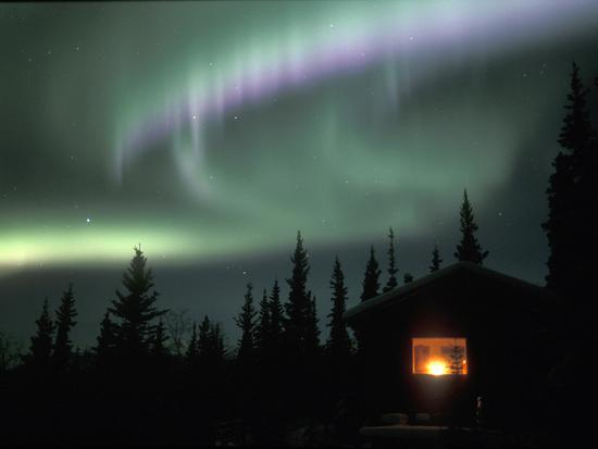 Aurora Borealis on a Cold Winter Night over a Cabin in the Taiga, Alaska, USA-Tom Walker-Photographic Print