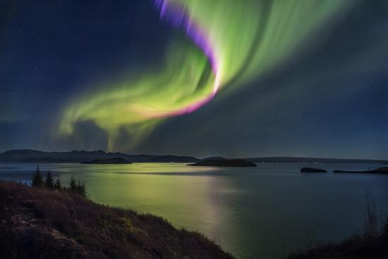Aurora Borealis or Northern Lights, Iceland-Arctic-Images-Photographic Print