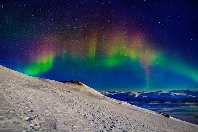 Aurora Borealis or Northern Lights in Full Color Seen from the Abisko Sky Station, Abisko--Photographic Print