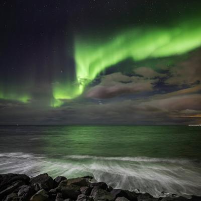 Aurora Borealis or Northern Lights, Lapland, Sweden Aurora Borealis or Northern Lights--Photographic Print