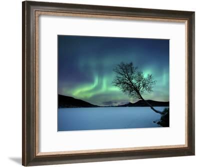 Aurora Borealis over Sandvannet Lake in Troms County, Norway-Stocktrek Images-Framed Photographic Print