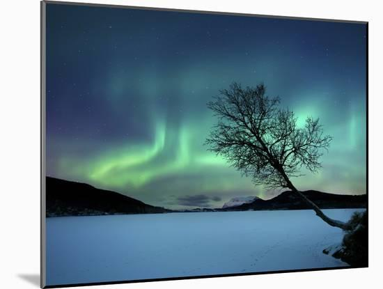 Aurora Borealis over Sandvannet Lake in Troms County, Norway-Stocktrek Images-Mounted Photographic Print