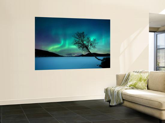 Aurora Borealis over Sandvannet Lake in Troms County, Norway-Stocktrek Images-Wall Mural