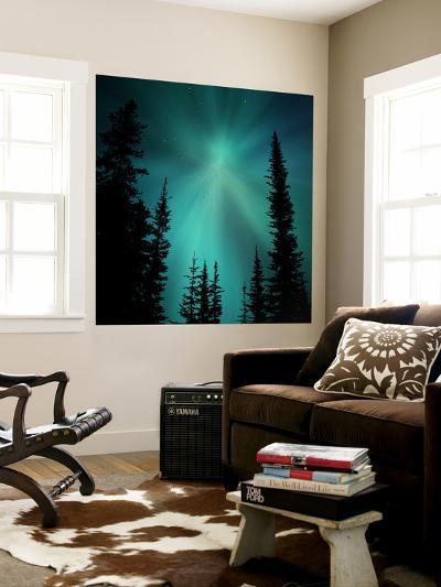 Aurora Borealis Showing Radial Effect-Mark Taylor-Wall Mural