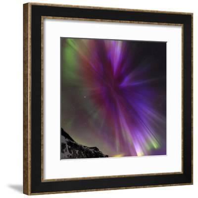 Aurora Borealis, the Northern Lights, in a Spectacular Crown, Aurora Corona-Babak Tafreshi-Framed Photographic Print