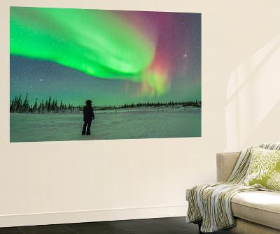 Aurora Borealis with Vega and Arcturus Stars over Churchill, Manitoba, Canada-Stocktrek Images-Wall Mural