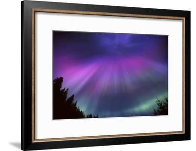 Aurora Corona over Crow Creek Sc Alaska Winter-Design Pics Inc-Framed Photographic Print