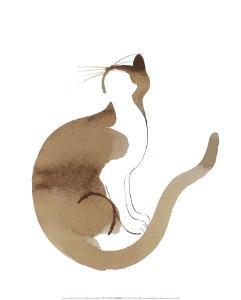 Chat by Aurore De La Morinerie