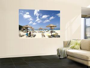 Umbrellas on Beach by Austin Bush