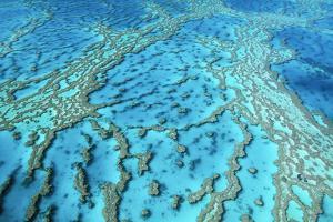 Australia Great Barrier Reef Hardy Reef