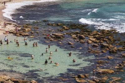 Australia, Sydney, Bronte, Bronte Beach, Elevated View-Walter Bibikow-Photographic Print