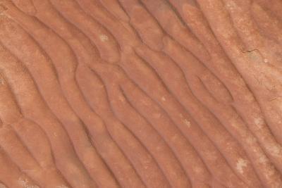 Australia, Watarrka National Park. Kings Canyon, Rim Walk. Detail of Carved Stone Sea Ripples-Cindy Miller Hopkins-Photographic Print