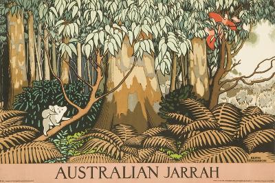 Australian Jarrah Travel Poster--Giclee Print