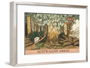 Australian Jarrah Travel Poster