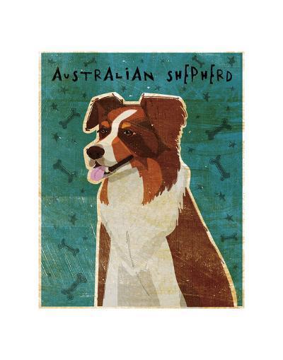 Australian Shepherd (Red)-John W^ Golden-Art Print