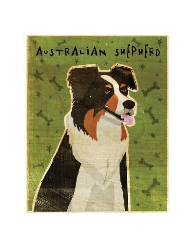 Australian Shepherd-John W^ Golden-Art Print