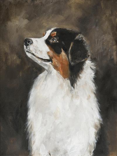 Australian Shepherd-Solveiga-Giclee Print